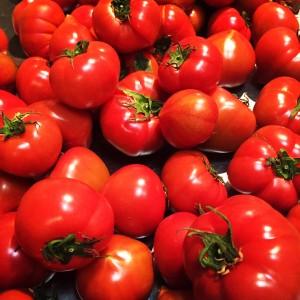 長崎県の西海(さいかい)トマト
